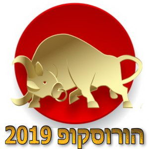 הורוסקופ שנתי 2019 מזל שור